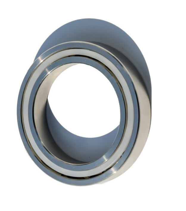 SKF 6309 6310 6311 6312 6313 6314 6315 6316 6317 Deep Groove Ball Bearing SKF Bearings
