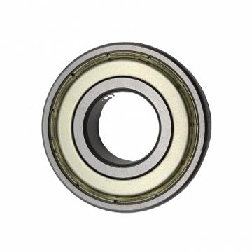 Mechanical Sic Ceramic Needle Bearing
